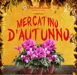 Mercatino d'Autunno @ Piazza Podestà, Varese | Varese | Lombardia | Italia
